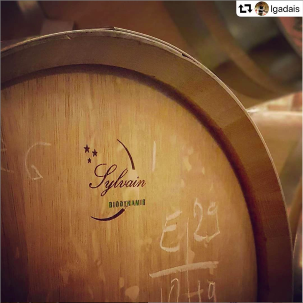 Sylvain biodynamic barrel